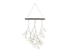 Gipskruid hanger