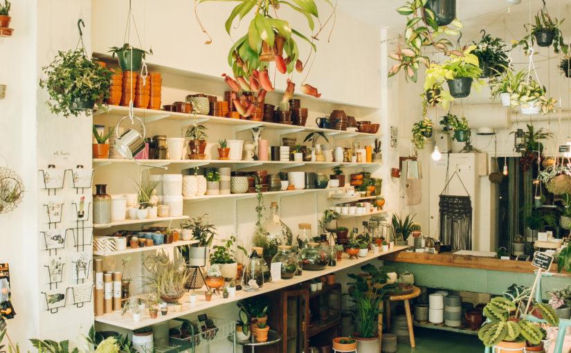 INSPIRE | DE LEUKSTE PLANTENWINKELS