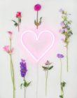 FEEL | VERWEN JE VALENTIJN