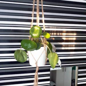 plantenhanger macramé